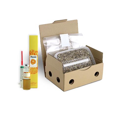 Grow Kits without Mycelium