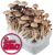 Panama | SupaGro Magic Mushroom Grow Kit