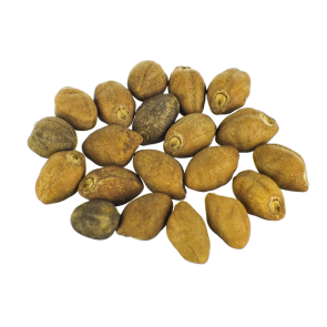 hawaiian baby woodrose seeds