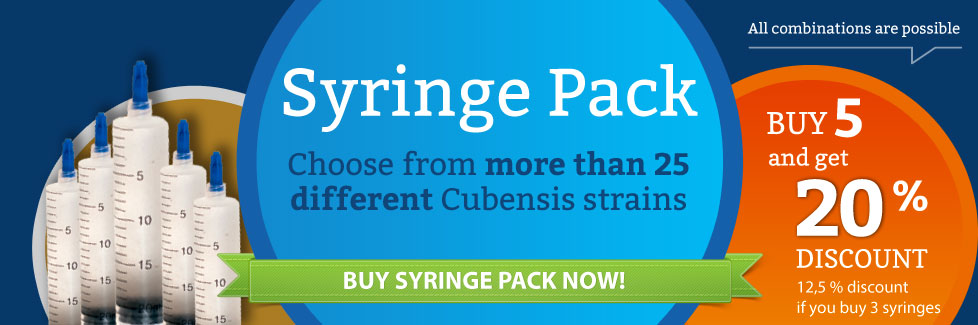 NEW: Cubensis Syringe Packages