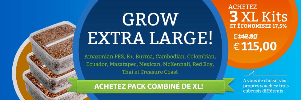 Achetez kit de culture de champi halucinogen XL