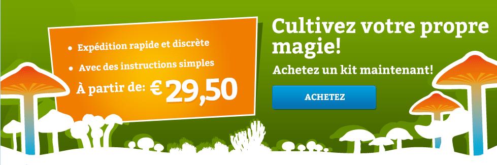 Achetez kit de culture de champi magique