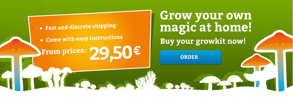 Magic_Mushroom_Growkits_Home_Banner
