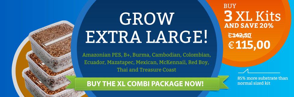 Offer_XL_Combi_Home_EN