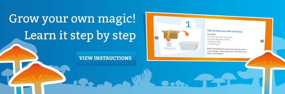mms-en-learn-how-to-grow-magic-mushrooms