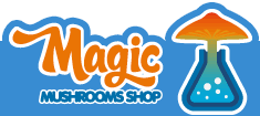 Magic Mushrooms Shop Amsterdam