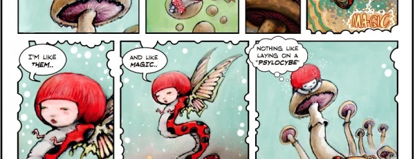 Amanenita Girl 2: The magic ladybug