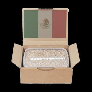Maak kennis met de Mexican paddo kweekset