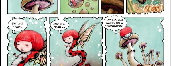 Amanenita Girl 2: The magic ladybug