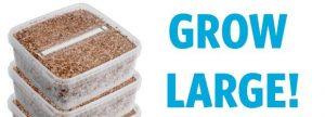 Extra Large Grow Kit Combi Pack