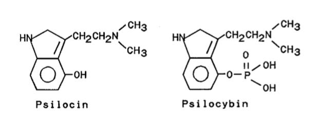 Psilocin and Psilocybin moleculs