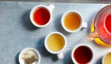 Magic Mushrooms tea
