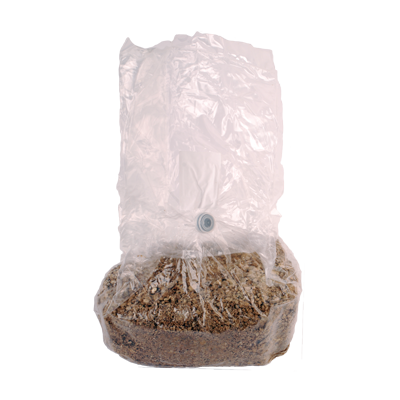 span bag kilo kit
