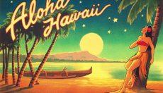All about the High Hawaiians Magic Truffles