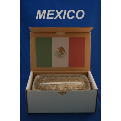 mexican_pi