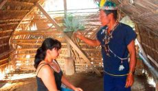 Ayahuasca: A Learning and Healing Spiritual Journey
