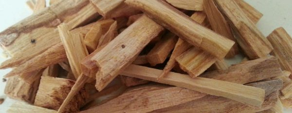 What is Palo Santo and how can I use it?