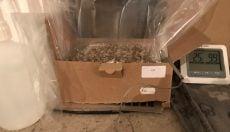 grow kit and heating mat