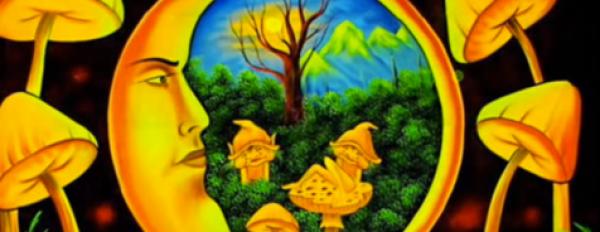 Magic Mushroom Dosage Guide!