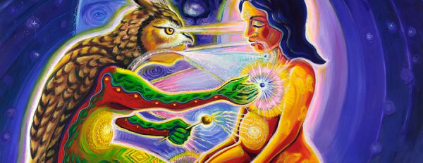 Magic Mushrooms Shop's monthly curated psychedelic news digest 1.28