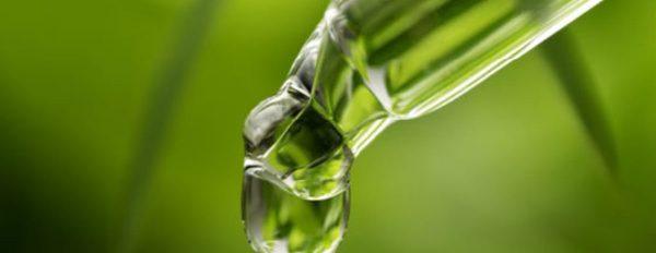 5 ways CBD Oil can benefit you!
