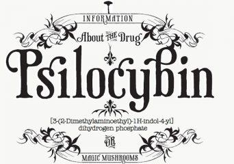 fast facts psilocybin
