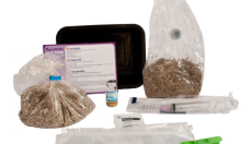 5 ways you will benefit from grow kits without mycelium