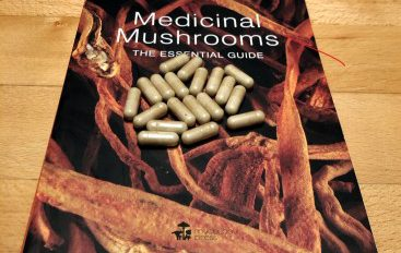 How to boost your immune system with medicinal mushroom supplements?